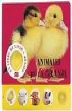 Portada de ANIMALES DE LA GRANJA: LIBRO DE TACTO Y SONIDO