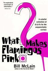 Portada de WHAT MAKES FLAMINGOS PINK?
