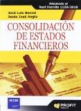 Portada de CONSOLIDACION DE ESTADOS FINANCIEROS: ADAPTADO AL REAL DECRETO 1159/2010