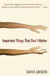 Portada de IMPORTANT THINGS THAT DON'T MATTER