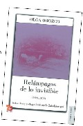 Portada de RELAMPAGOS DE LO INVISIBLE: ANTOLOGIA