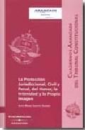 Portada de LA PROTECCION JURISDICCIONAL, CIVIL Y PENAL, DEL HONOR, LA INTIMIDAD Y LA PROPIA IMAGEN