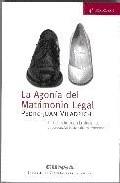 Portada de AGONIA DEL MATRIMONIO LEGAL:UNA INTRODUCCION A LOS ELEMENTOS CONCEPTUALES BASICOS DEL MA