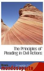 Portada de THE PRINCIPLES OF PLEADING IN CIVIL ACTIONS