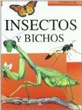 Portada de INSECTOS Y BICHOS