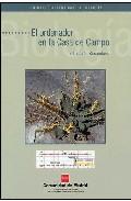Portada de EL ORDENADOR EN LA CASA DE CAMPO : ESTUDIO DE ECOSISTEMAS