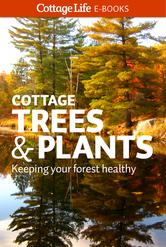 Portada de COTTAGE TREES & PLANTS