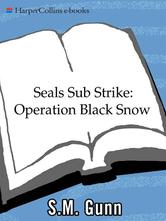 Portada de SEALS SUB STRIKE: OPERATION BLACK SNOW