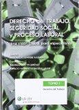 Portada de DERECHO DEL TRABAJO, SEGURIDAD SOCIAL Y PROCESO LABORAL: UNA VISION GLOBAL PARA ESPECIALISTAS
