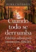 Portada de CUANDO TODO SE DERRUMBA (E-BOOK)