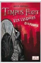 Portada de TEMPUS FUGIT (EBOOK)