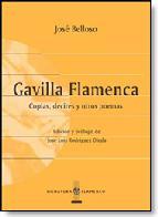Portada de LOS CAMINOS DEL FLAMENCO: ETNOGRAFIA, CULTURA Y COMUNICACION EN ANDALUCIA