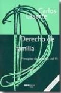 Portada de PRINCIPIOS DE DERECHO CIVIL, VI. DERECHO DE FAMILIA